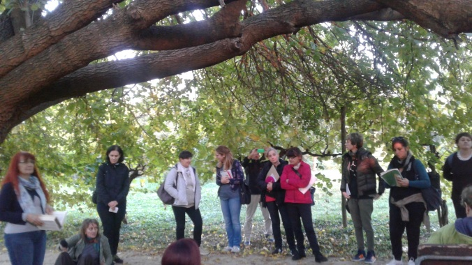 Parco Arboreto Bologna