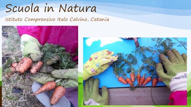 Scuola in Natura